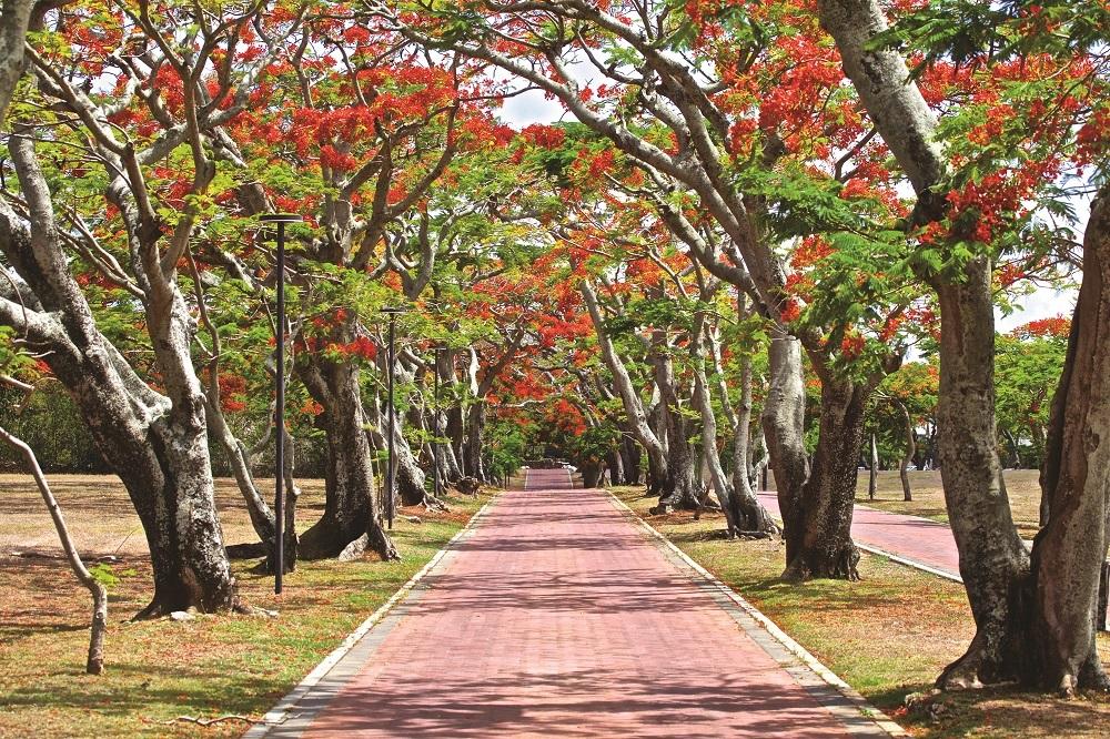 Mont Choisy Smart City Luxury Indian Ocean 1