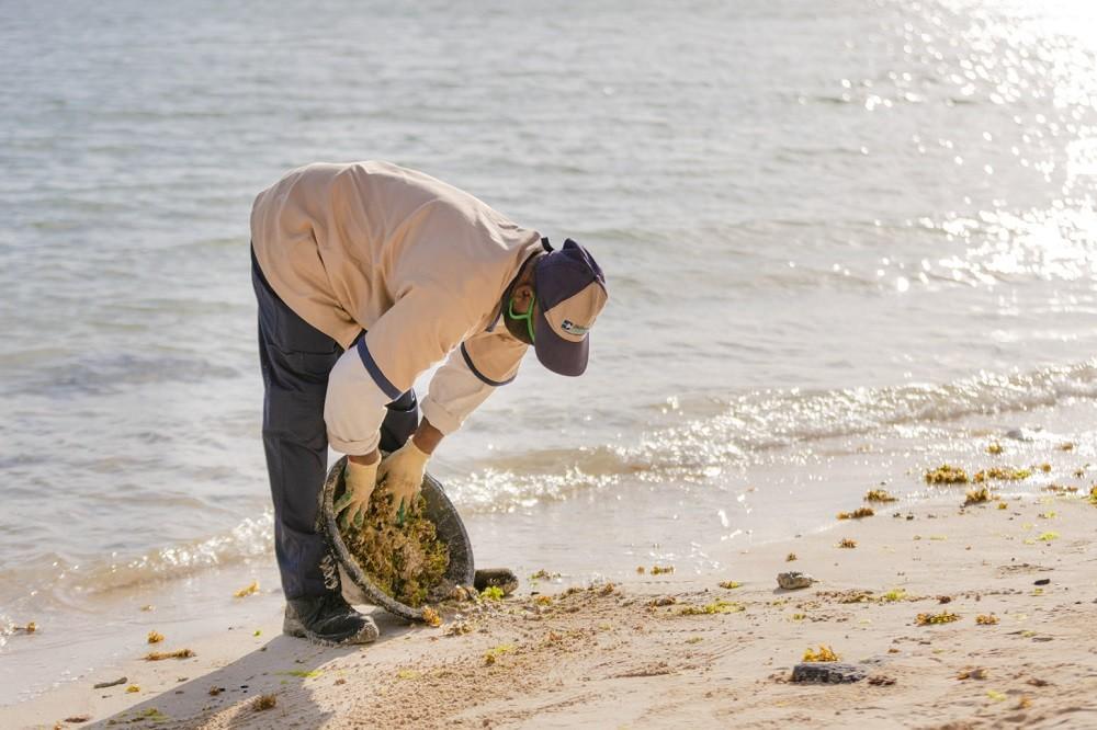 Luxury Indian Ocean Respekte Moris 1